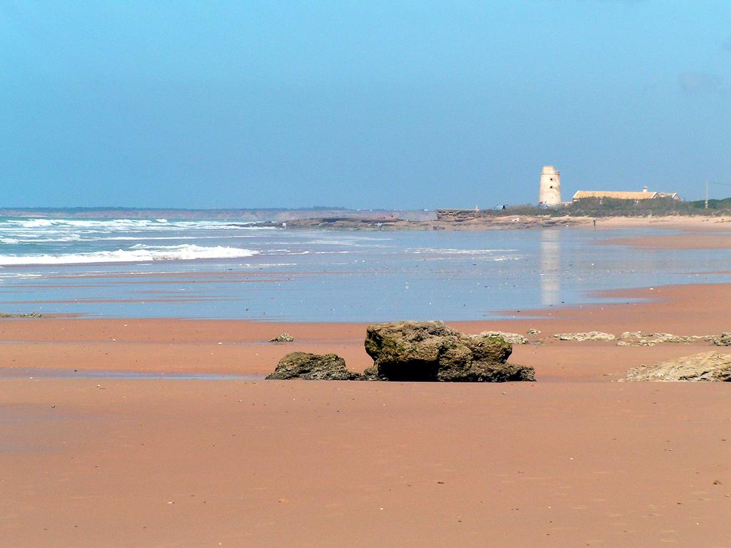 La Playa del Palmar en Cádiz