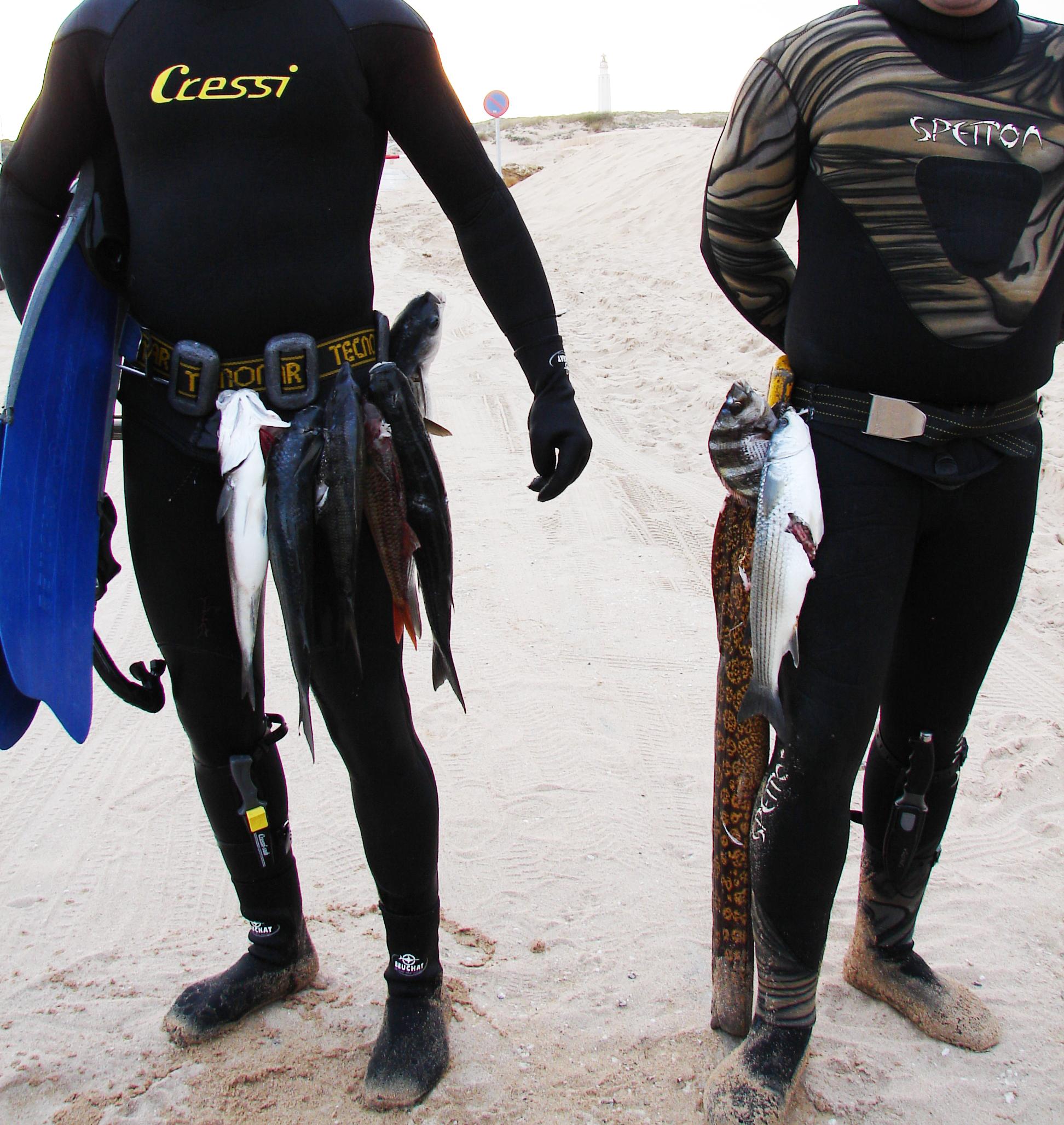 Submarinismo y buceo en playas del Cabo Trafalgar
