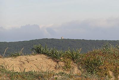 El Pinar de la Breña, las torres vigías, los acantilados..